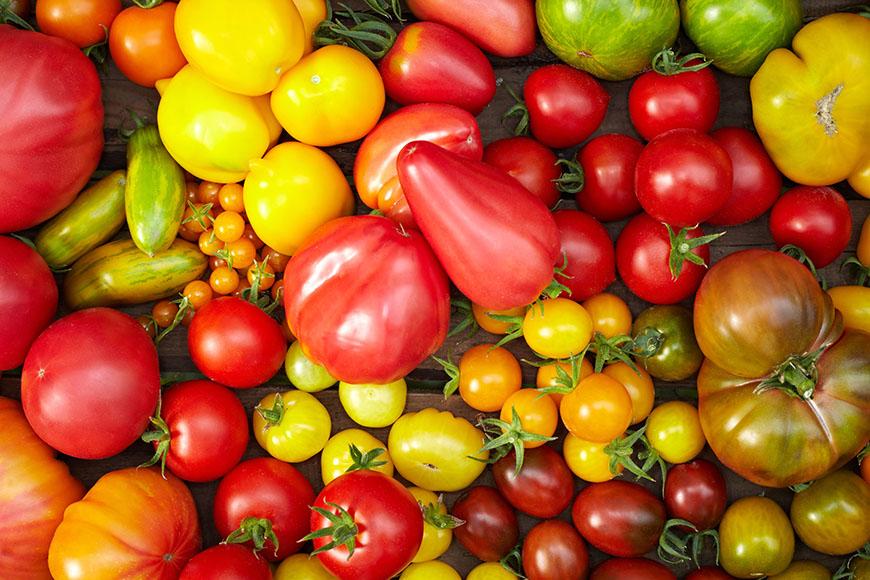 Verscheiden Tomatensorten zusammengewürfelt