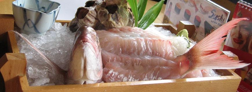 Ikizukuri: aufgestellter Fisch ohne Flanken