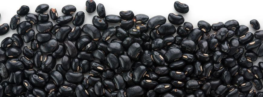 Schwarze Bohnen