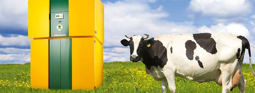 Biomasse-Heizlösungen von KWB.