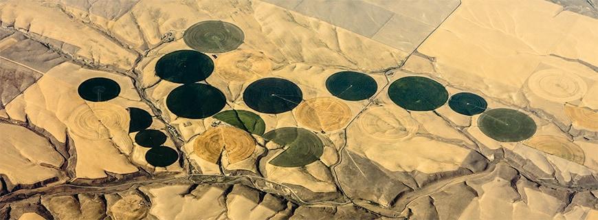 Runde begrünte Flächen in der Wüste