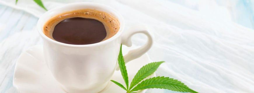 Cannabis-Kaffee kommt in den USA auf den Markt