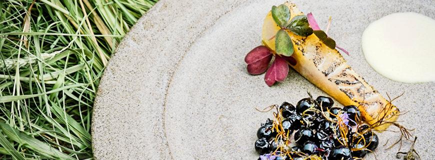 Blaubeeren mit Strahlenlose-Kamille-Kuchen, Blumenkohl-Stiel-Püree und Echte Mädesüß