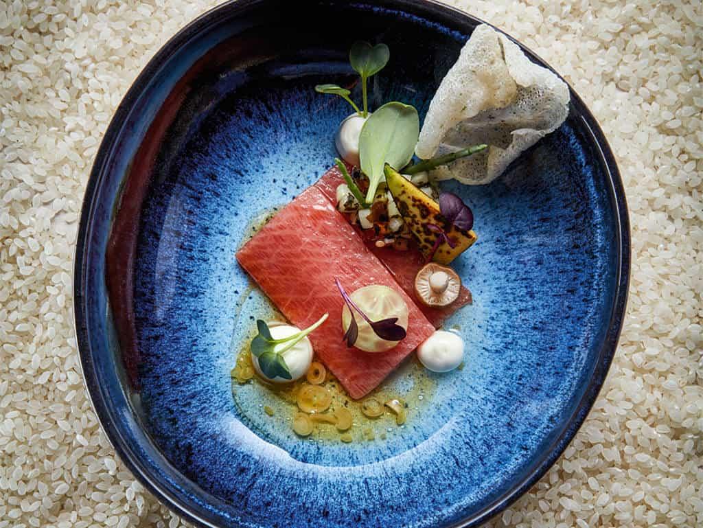 Blauer Teller mit Tunfisch und schöner Garnitur