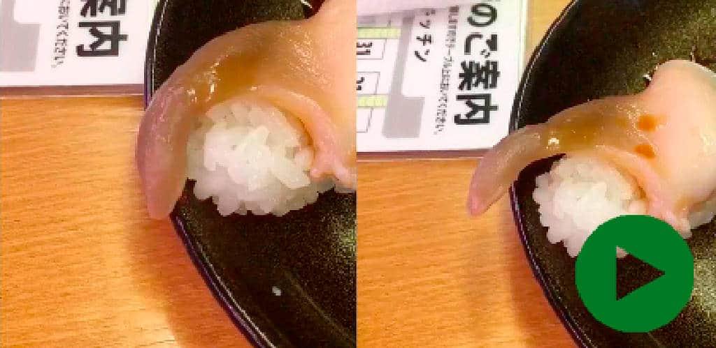 Lebendes Sushi spaltet das Netz