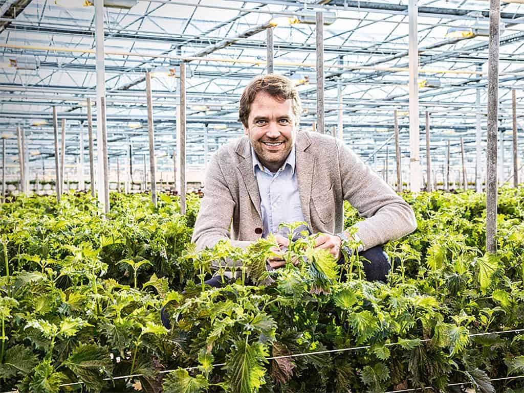 Marc Bonsmann, Country Manager D|A|CH von Koppert Cress