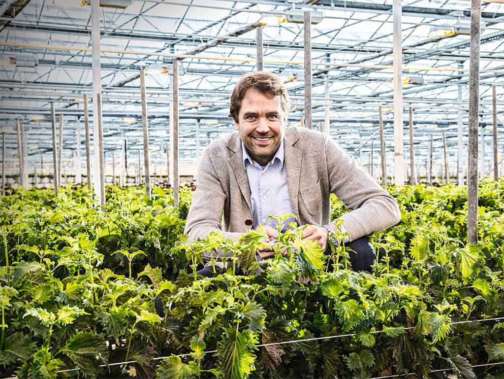Marc Bonsmann, Koppert Cress Country Manager DACH