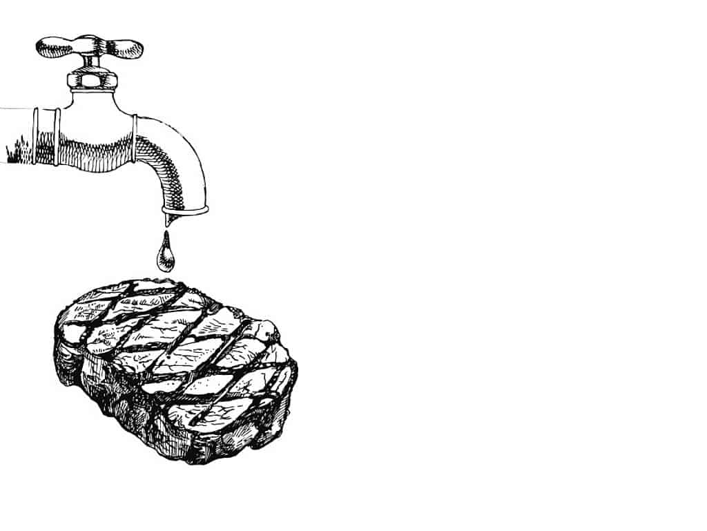 Fleisch waschen – ja oder nein?