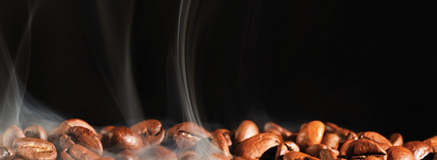Das schwarze Gold - Kaffeelehre