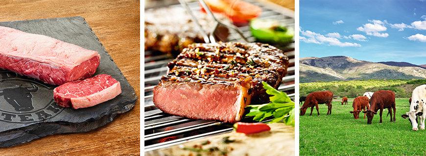 Beste Beef-Fleisch-Qualität