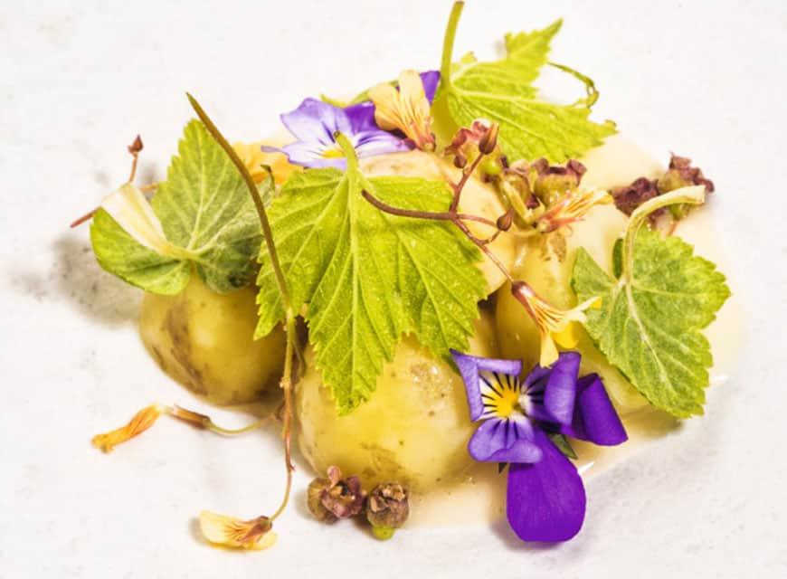Frühkartoffeln und junge Johannisbeeren