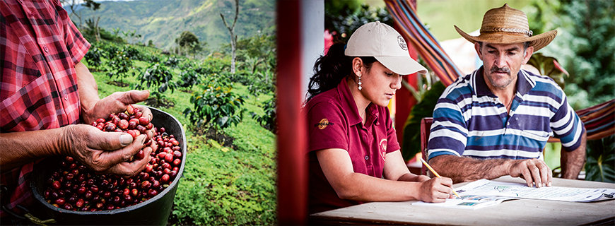 Firma Nespresso-Nachhaltigkeit im Fokus