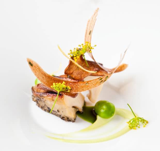 gegrillte abalone