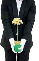 ein Kellner von Hals bis Knie ist zu sehen, mit einer Topfpflanze in seinen Haenden