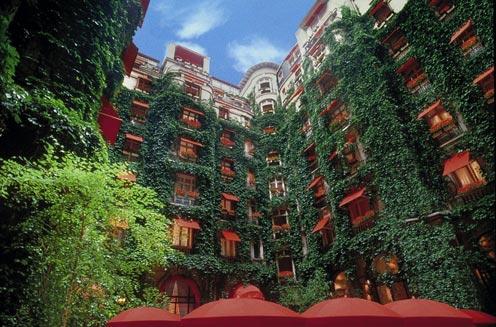 der Innenhof eines Hotels, völlig von efeu bekleidete Hauswände