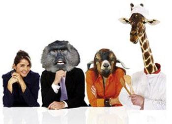 Kollegen unter sich mit Giraffen, Affen und Wildmasken auf dem Kopf