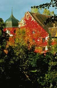 Ein Gebäude versteckt von bunten Bäumen in Herbstlichen Farben getaucht