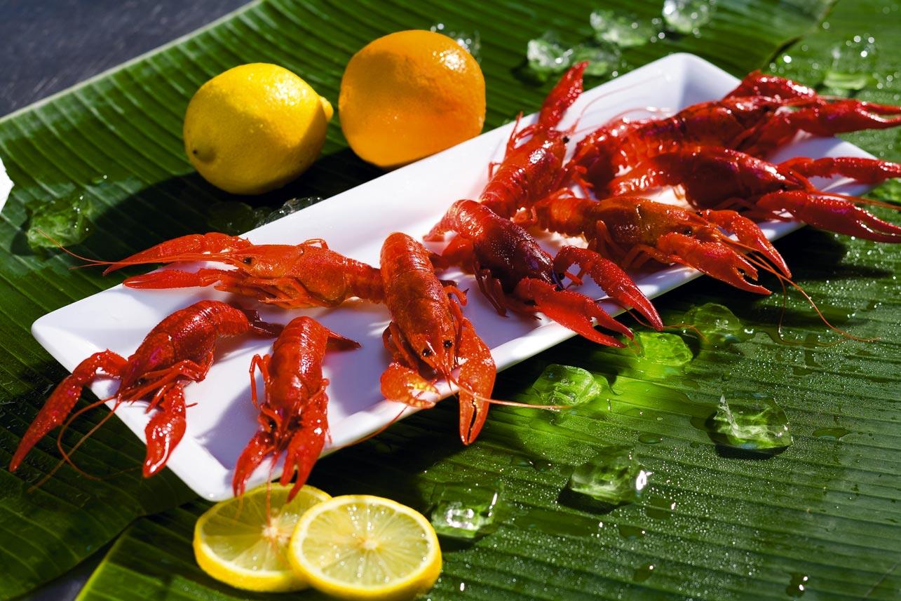 Meeresfrüchte auf einem Teller