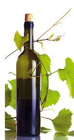 Eine Weinflasche mit Weinblättern