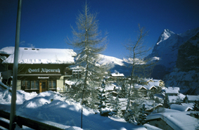 Schneebezuckterte Berge und Bäume mittendrin ein kleine romantische Skihütte