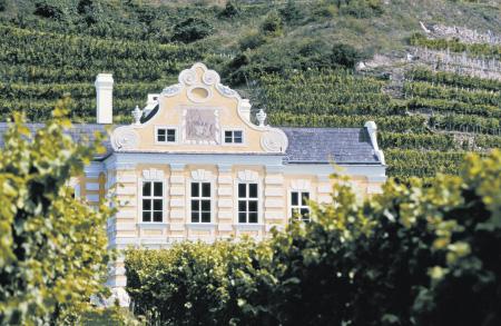 ein Haus im Kolonialstil inmitten von Weinbergen