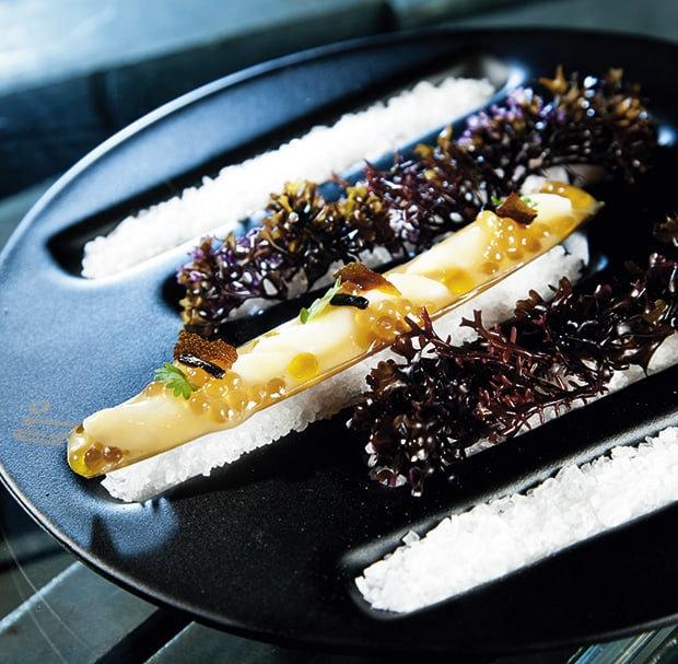 Messerscheide-Muschel mit Safran-Perlen