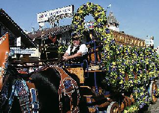 ein Mann auf einer Kutsche die mit Blumen geschmückt wurde