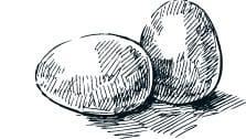 eine Skizze von einem Ei