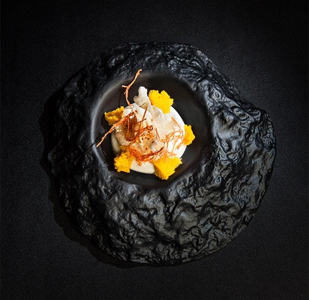parmesankoralle mit cheddar und karotte