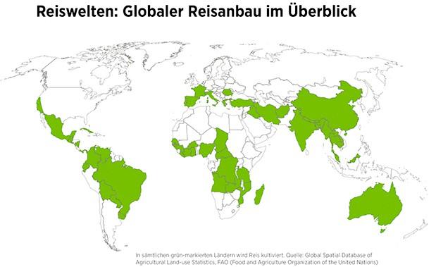 globaler Reisanbau