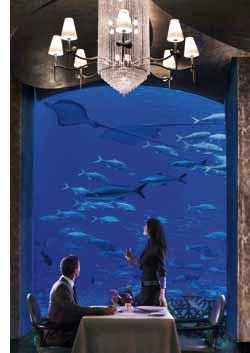 das Luxusresort Atlantis, Dinieren vor einem Aquarium