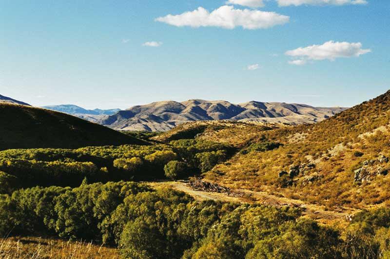 Die Neuseeländische Landschaft soweit das auge reicht