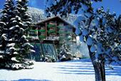 eine Skihütte hinter Schneebedeckten Bäumen