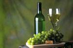 Flasche Weißwein aufgetischt mit Weintrauben auf einem Holzbrett