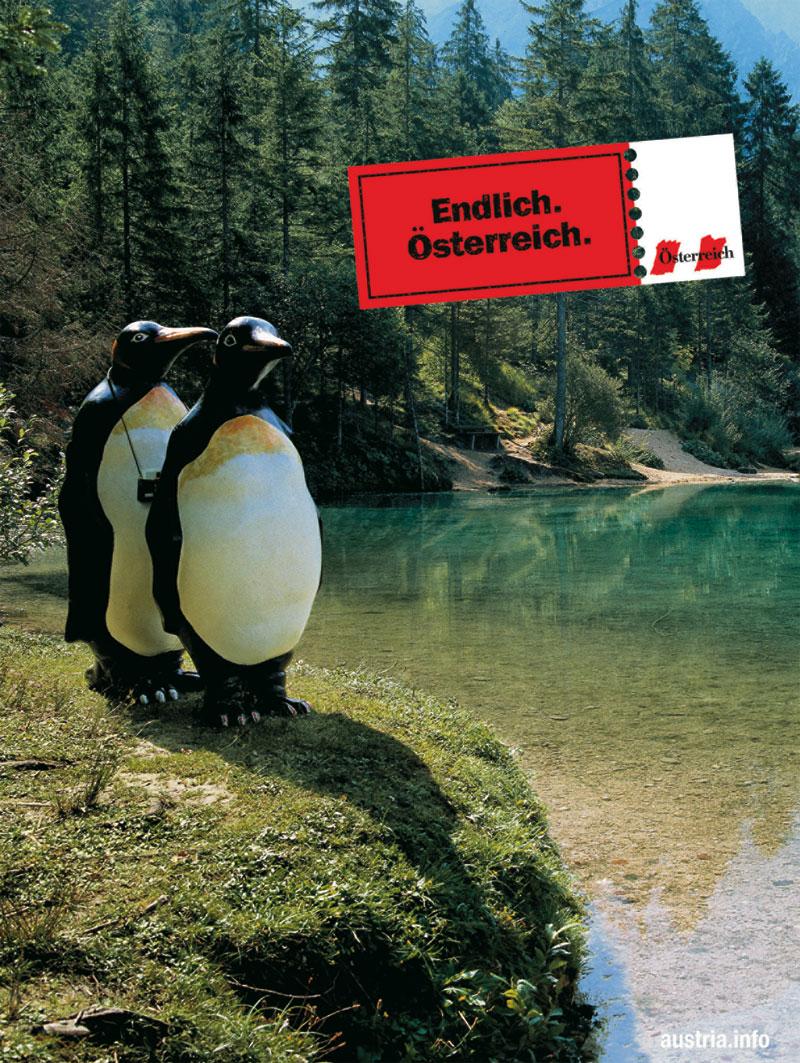 Die kampagne zeigt zwei pinguine vor einem glasklarem see auf einem felsen stehend