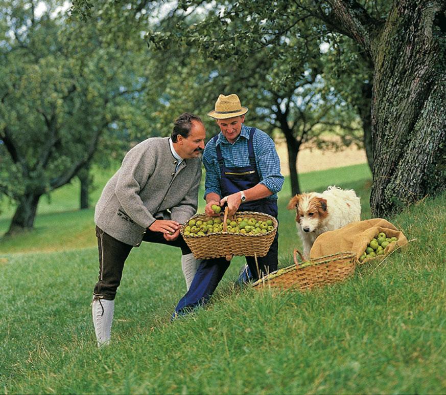 johann lafer beim äpfelpflücken mit einem jungen Herrn und einem Hund