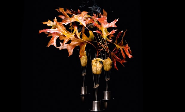 Fasan – Schalotte, Cider, brennendes Eichenlaub