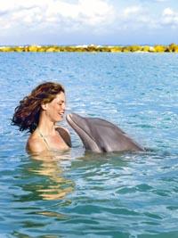 eine Frau schwimmt mit einem Delfin