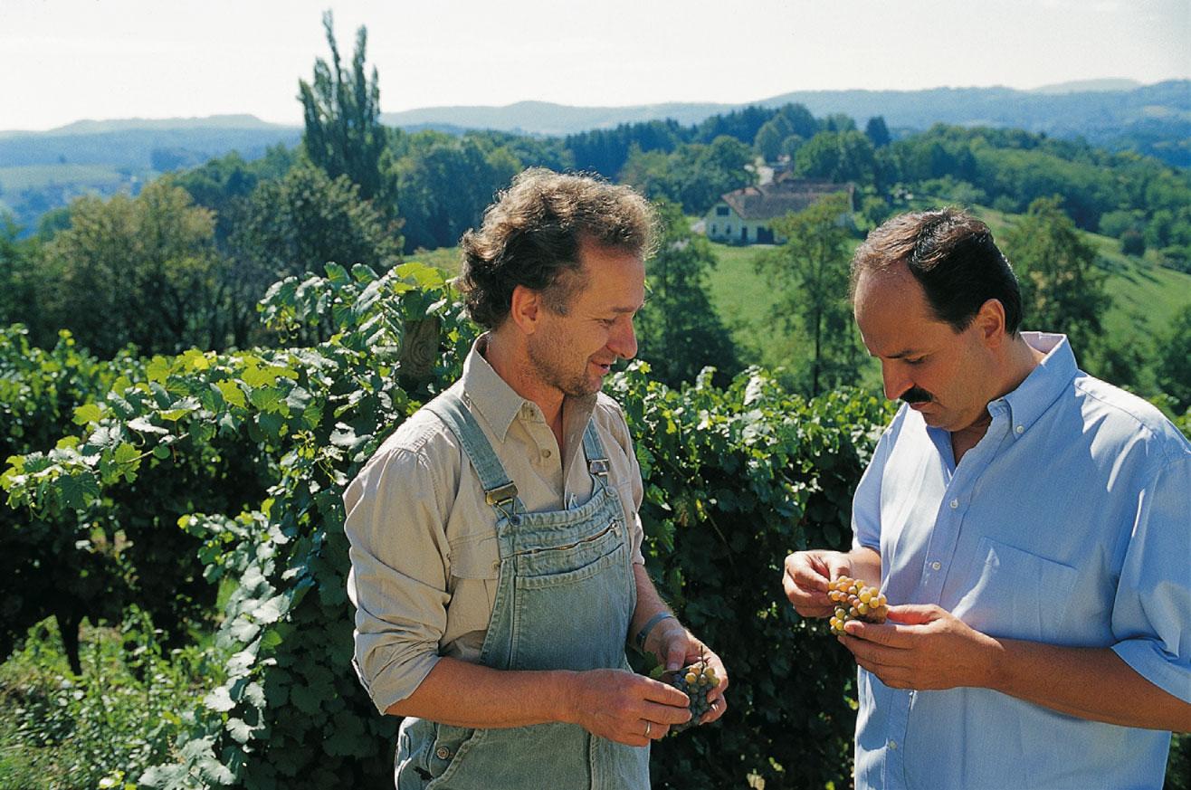 johann lafer mit einem Herrn in Weinbergen bei der Traubenernte