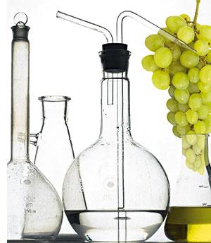 das Equipment zur Weinherstellung