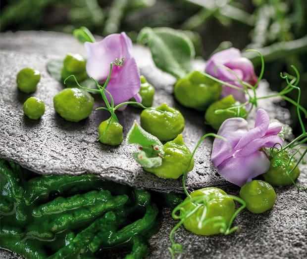 Cremiges Salicorne Risotto mit Erbsen und jungem Spinat