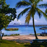 ein strahlend blauer Himmel, meterhohe Palmen, weißer Sandstrand und ein Kreuzfahrtschiff in der Ferne