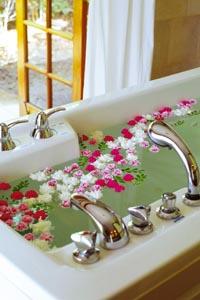 Ein Blumenbad mit roten, weißen und rosanen Blüten