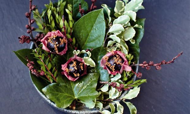 schwarze johannisbeere und rosen