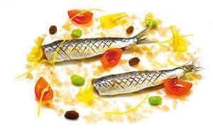 eine Kreation von Fisch aus dem Hotel Restaurant Troisgros