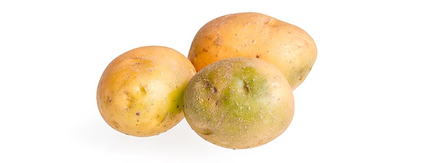 Grüne Karoffel