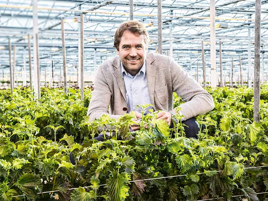 Country Manager D/A/CH von Koppert Cress Marc Bonsmann
