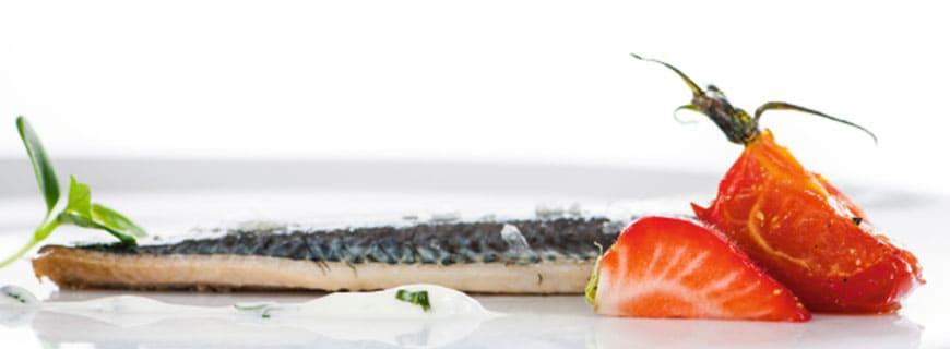 sardine-header