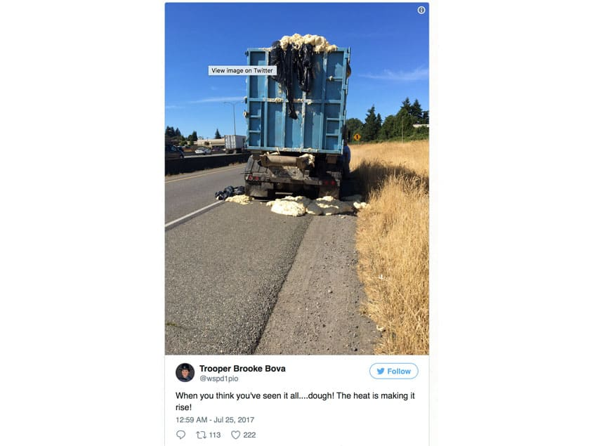 Truck Teig Tacoma
