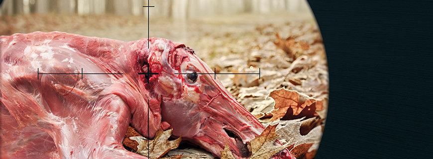 gehäutetes Wildschwein